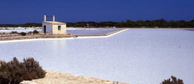 Sal de Ibiza - Las Salinas