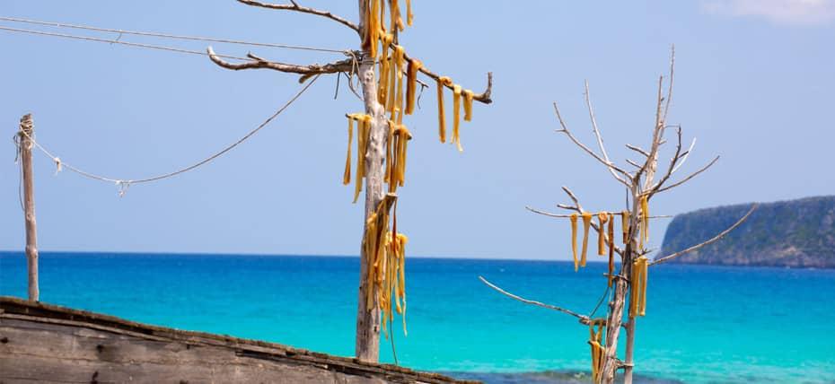 Peix Sec di Formentera, chiamato anche Pesce secco